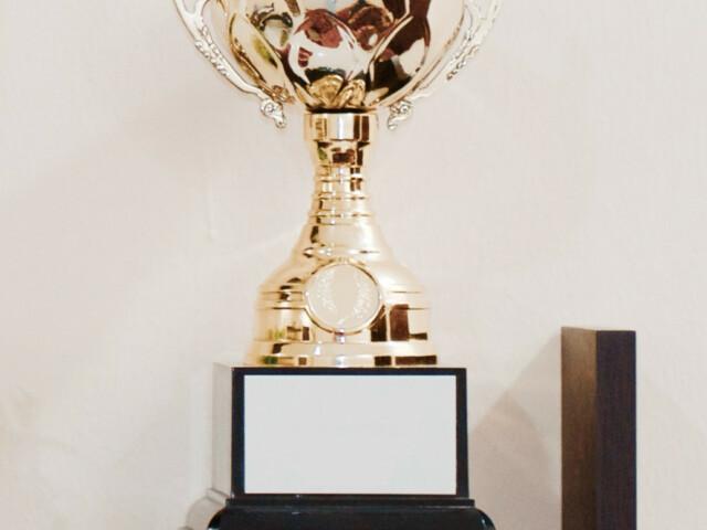 Vereinsmeisterschaften im Turnen & Angebotsvorstellung